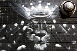 Bushwick Murals pt3 - 2