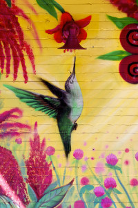 Bushwick Murals pt3 - 9